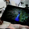 Acer Iconia Tab A700 comienza la navegación en los EE.UU., sólo el modelo de plata disponible por el momento